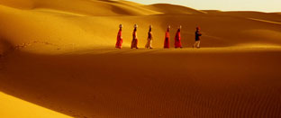 Rajasthan and Golden Sand Tour